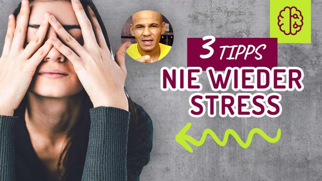 161 - NIE wieder STRESS mit diesen 3 TIPPS. Stress abbauen? Glücklich werden?  Coach Cecil 2017/2018