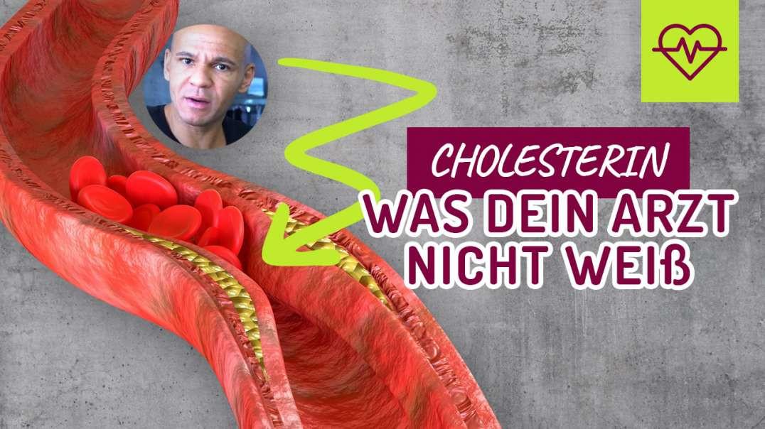 Cholesterin. Was dein Arzt NICHT weiß. LDL Cholesterin wirklich schlecht ??