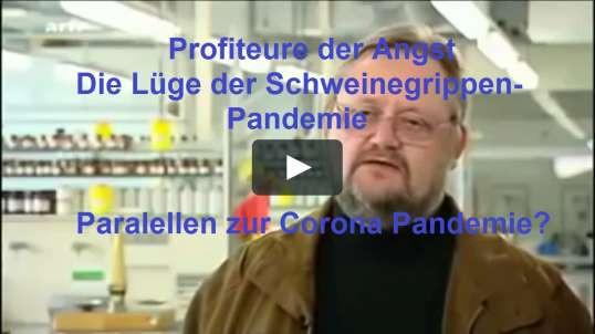 Profiteure der Angst von 2009 Arte Schweinegrippen Pandemie Lüge - Die Paralellen zur Corona Pandemi